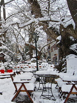 Winter in Pelion